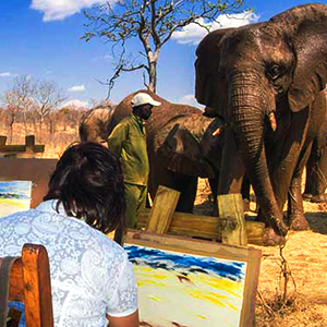 Elephant Art Safari in Victoria Falls