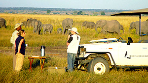 Chobe-National-Park.jpg (35 KB)