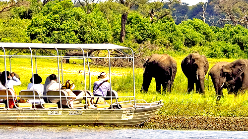 Chobe-safari-specials (312 KB)