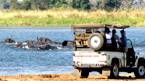 Zambezi safari game drive.jpg (223 KB)